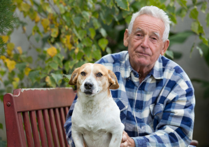 Hombre mayor con el perro en patio imagen de archivo