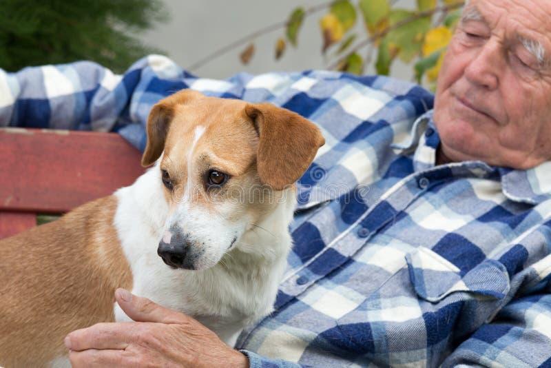 Hombre mayor con el perro en patio foto de archivo libre de regalías