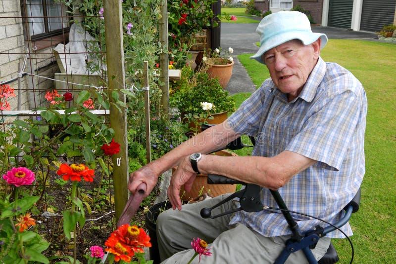 Hombre mayor: el cultivar un huerto imagen de archivo