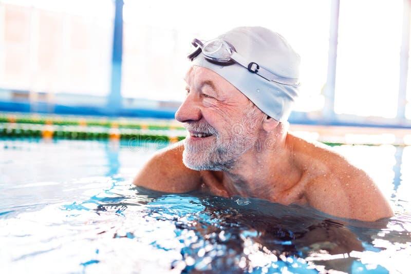 Hombre mayor en una piscina interior foto de archivo