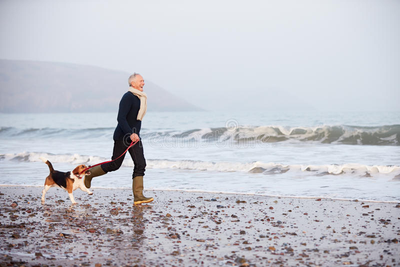 Hombre mayor que camina a lo largo de la playa del invierno con el perro casero fotografía de archivo