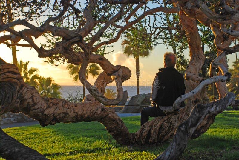 Hombre mayor que disfruta de la opinión de la puesta del sol en el parque de Heisler, Laguna Beach, CA fotos de archivo libres de regalías