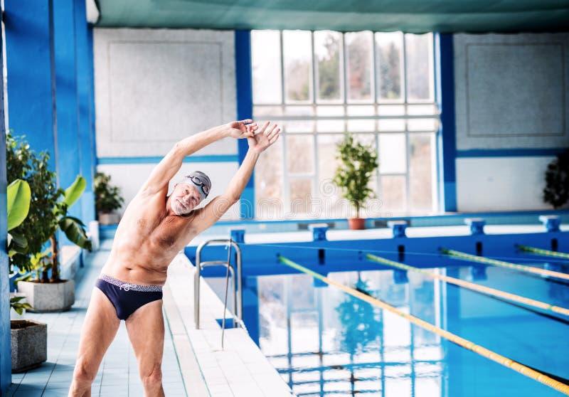 Hombre mayor que estira por la piscina interior fotografía de archivo libre de regalías