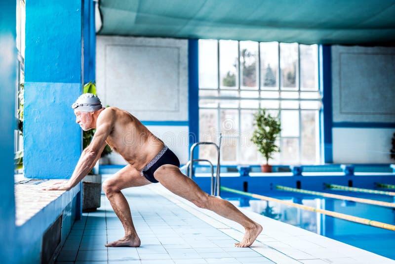 Hombre mayor que estira por la piscina interior imagen de archivo libre de regalías
