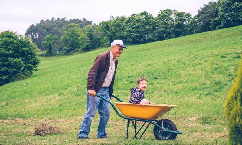 Hombre mayor que rastrilla el heno con el bieldo en campo fotografía de archivo libre de regalías