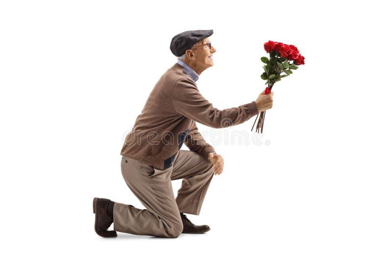 Hombre mayor que se arrodilla con un ramo de rosas foto de archivo libre de regalías