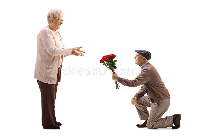 Hombre mayor que se arrodilla y que da un manojo de rosas rojas a una mujer mayor fotografía de archivo