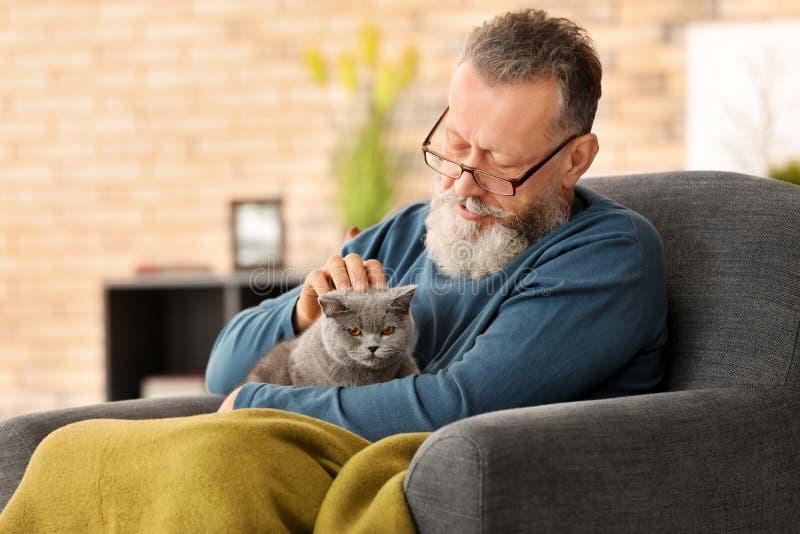 Hombre mayor que sostiene el gato lindo foto de archivo