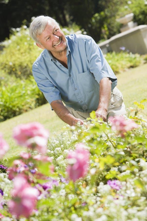 Hombre mayor que trabaja en jardín fotografía de archivo