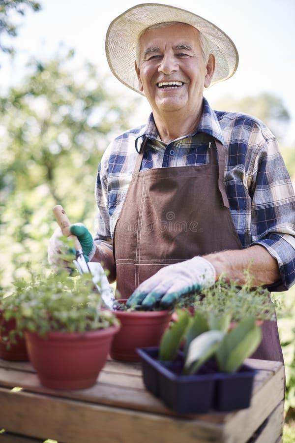 Hombre mayor que trabaja en jardín fotos de archivo libres de regalías