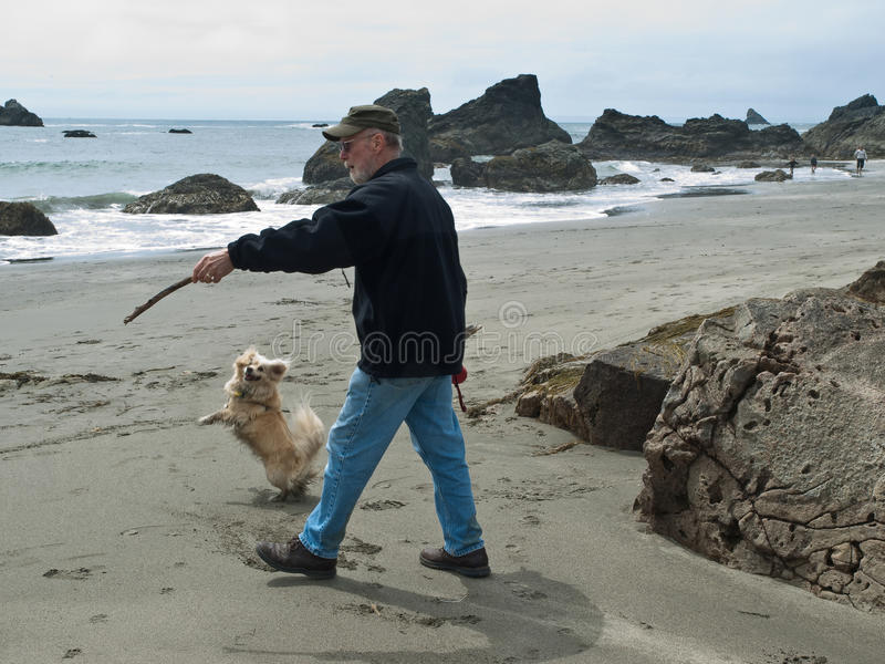 Hombre mayor y perro en la playa imágenes de archivo libres de regalías