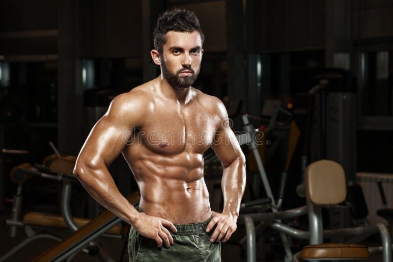 Hombre muscular atractivo que presenta en el gimnasio, abdominal formada ABS desnudo masculino fuerte del torso, resolviéndose imagen de archivo libre de regalías