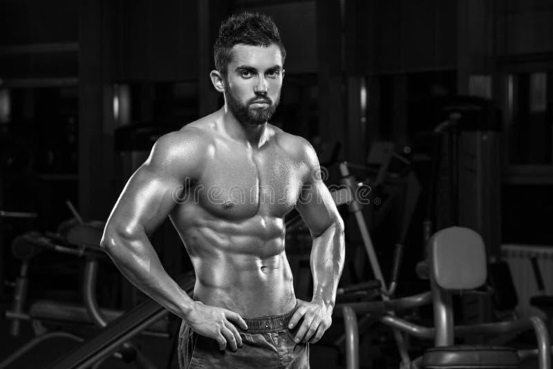 Hombre muscular atractivo que presenta en el gimnasio, abdominal formada ABS masculino fuerte del torso, resolviéndose imagen de archivo