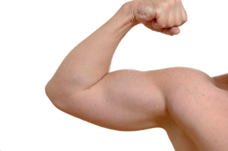 Hombre muscular que dobla su brazo fotos de archivo libres de regalías