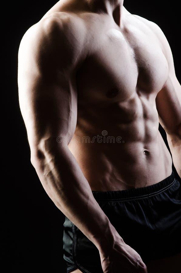 Hombre muscular que presenta en estudio oscuro fotografía de archivo