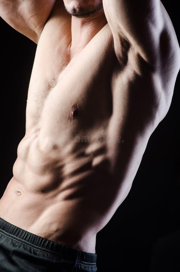 Hombre muscular que presenta en estudio oscuro imágenes de archivo libres de regalías