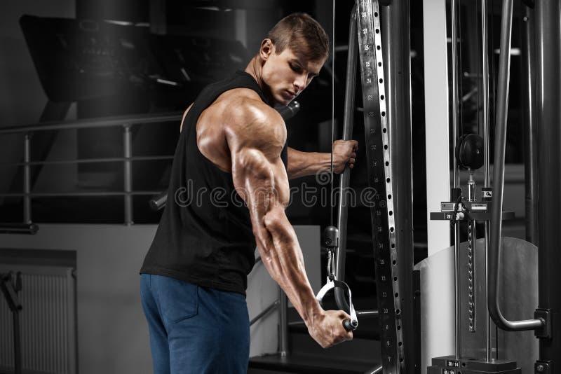 Hombre muscular que se resuelve en el gimnasio que hace ejercicios en los tríceps, varón fuerte imagen de archivo