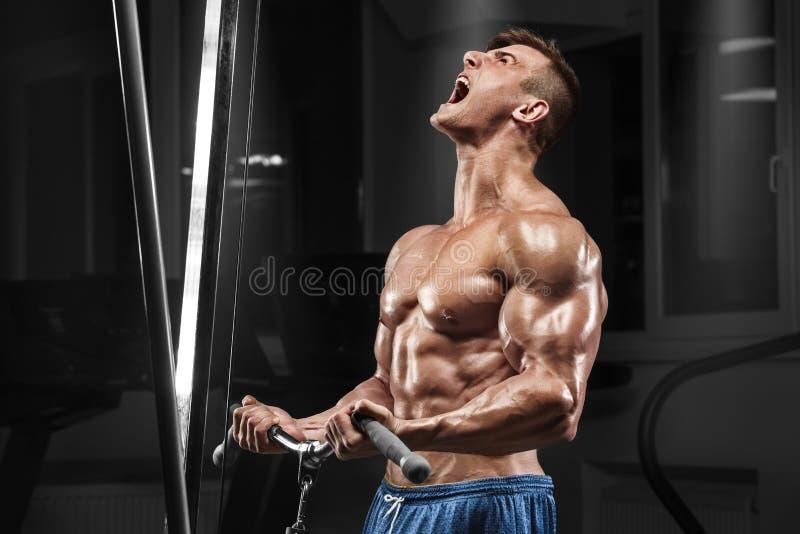 Hombre muscular que se resuelve en el gimnasio que hace ejercicios en los bíceps, ABS desnudo masculino fuerte del torso foto de archivo libre de regalías