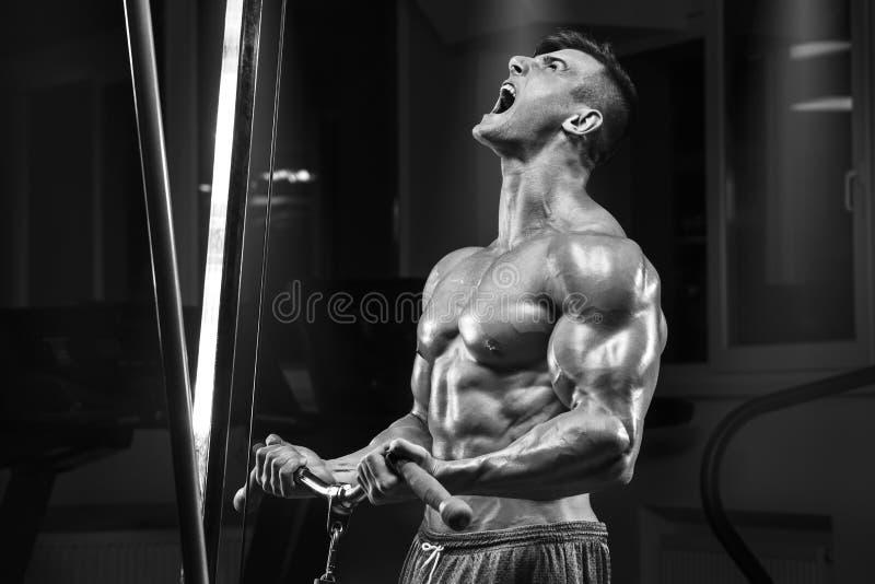 Hombre muscular que se resuelve en el gimnasio que hace el ejercicio, ABS masculino fuerte del torso fotos de archivo