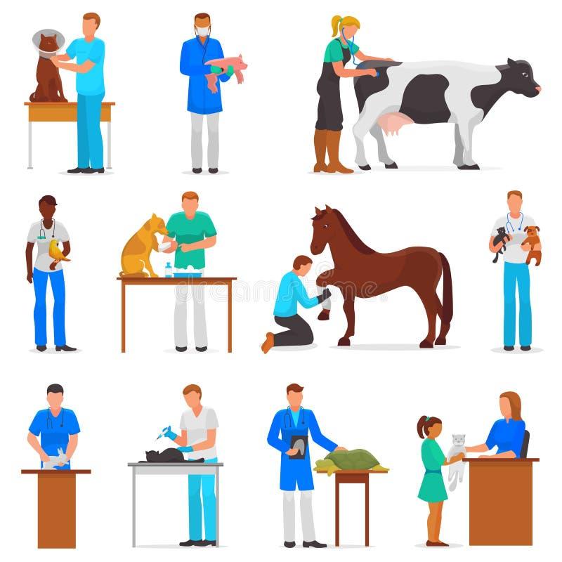 Hombre o mujer veterinario del doctor del vector veterinario que trata los pacientes gato del animal doméstico o el sistema del e libre illustration