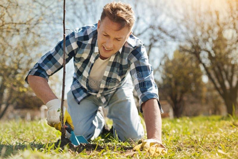 Hombre positivo que planta un árbol en el jardín imagen de archivo