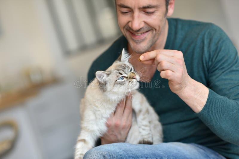 Hombre que alimenta el pequeño gato fotos de archivo