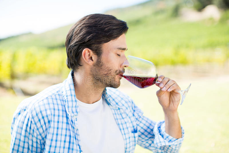 Hombre que bebe el vino rojo foto de archivo