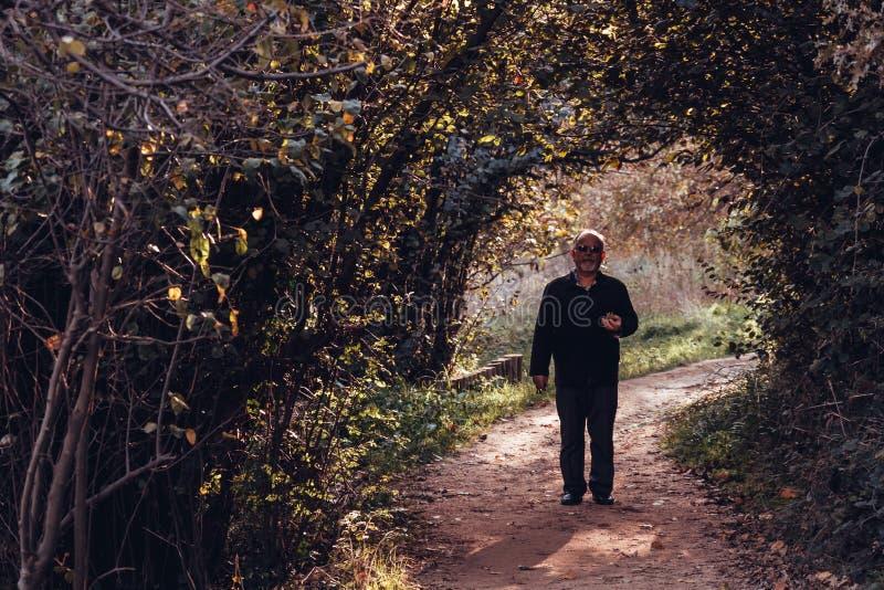 Hombre que camina en el camino rodeado con los árboles verdes y Bushe fotos de archivo