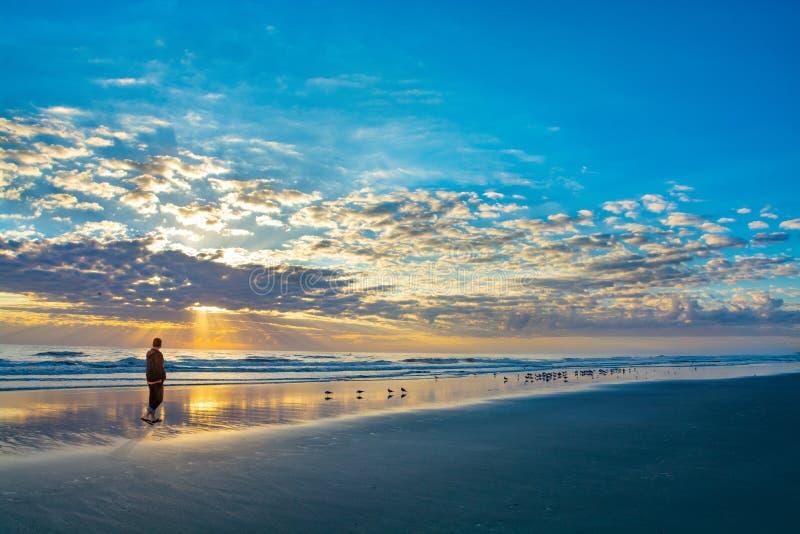 Hombre que camina en la playa en la salida del sol en la Florida fotografía de archivo libre de regalías