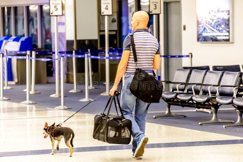 Hombre que camina su perro en un aeropuerto fotografía de archivo