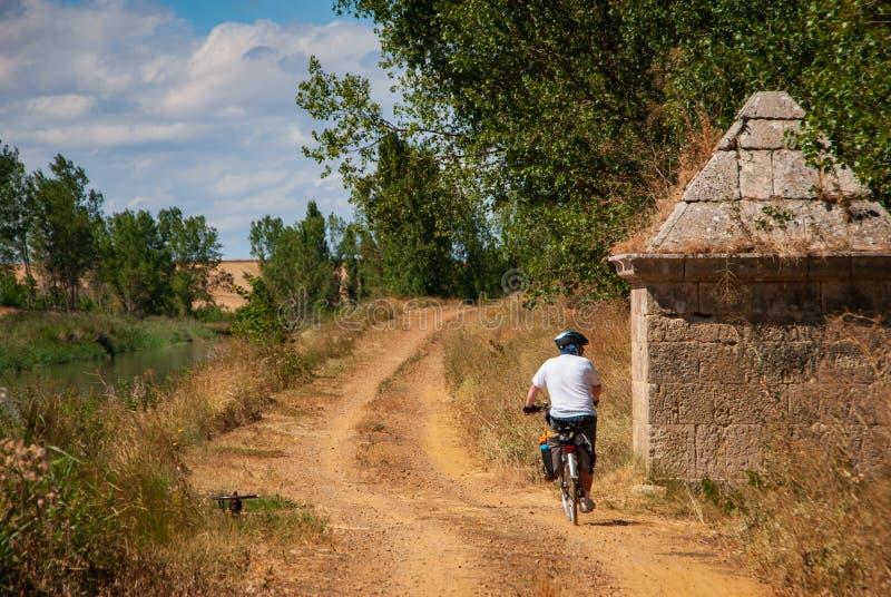 Hombre que completa un ciclo a través del canal de Castilla Palencia España foto de archivo libre de regalías