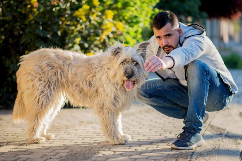 Hombre que entrena a su perro peludo grande del briard Los puntos del hombre en algo, el perro pastor miran eso imagen de archivo