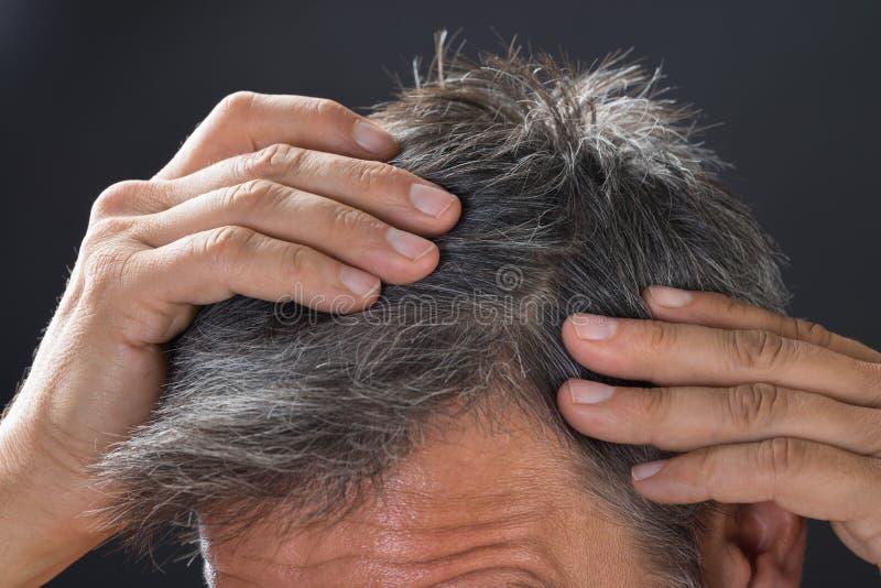 Hombre que examina su pelo blanco fotos de archivo libres de regalías