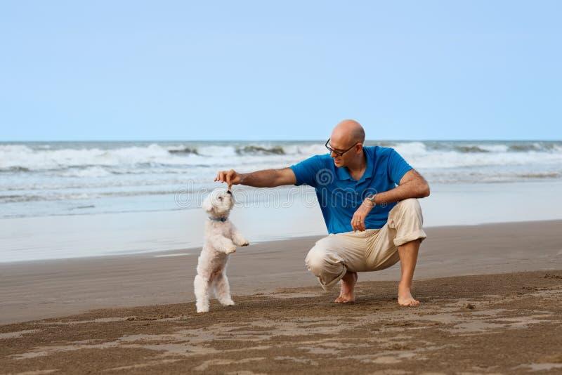 Hombre que juega con el perro en la playa foto de archivo