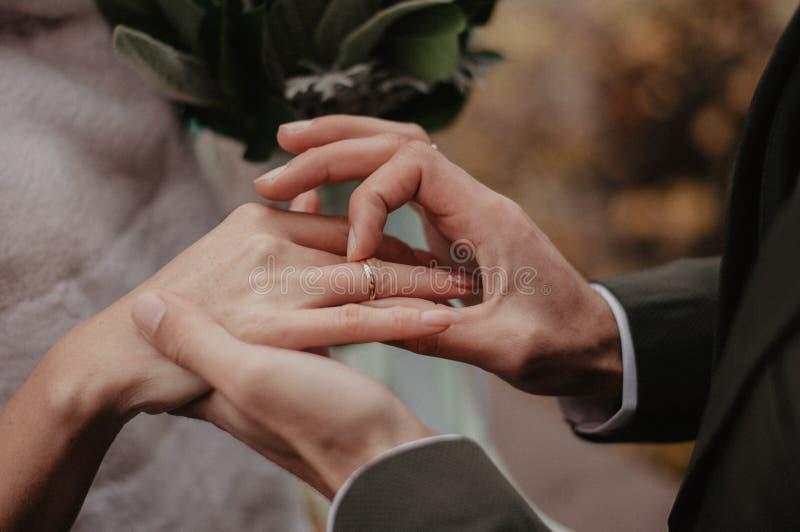 Hombre que lleva a cabo la mano de la novia con el anillo de bodas del oro imagen de archivo