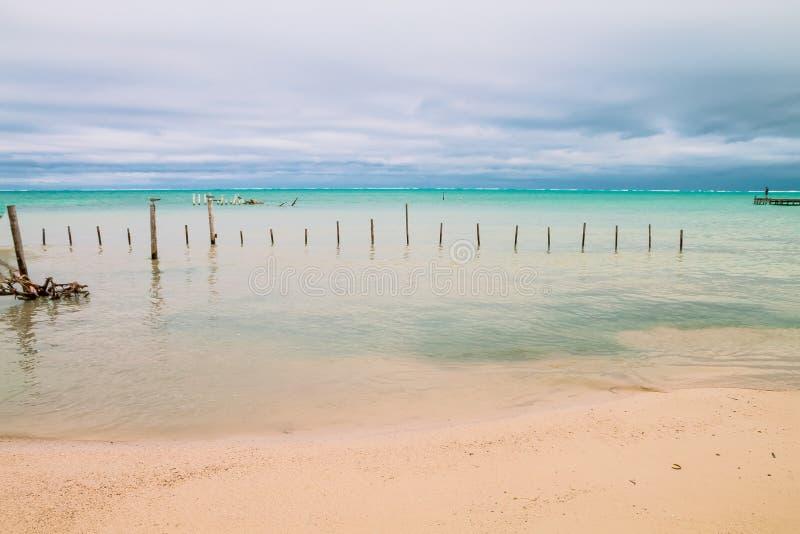 Hombre que mira el horizonte delante de un mar del Caribe cubierto fotos de archivo