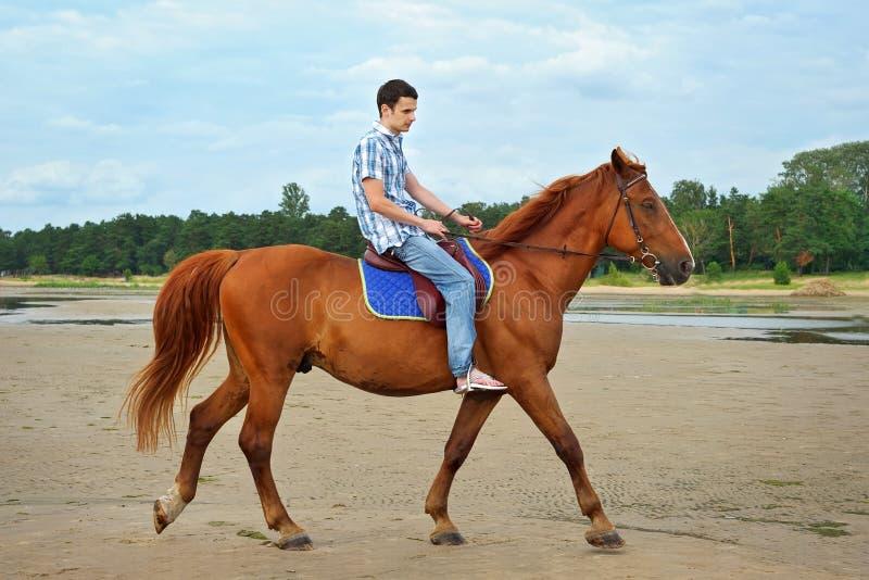 Hombre que monta un caballo fotos de archivo