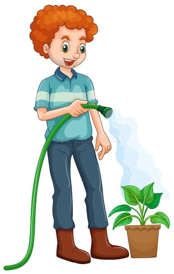 Hombre que riega la planta stock de ilustración