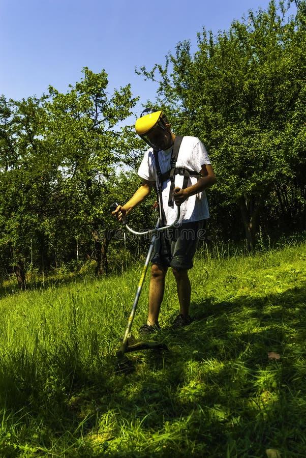 Hombre que siega el campo salvaje verde fotografía de archivo