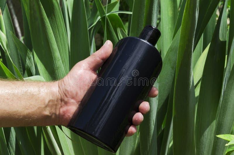Hombre que sostiene la botella negra de champú contra las hojas verdes, luces del sol imagen de archivo