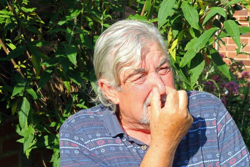 Hombre que sostiene la nariz. imágenes de archivo libres de regalías