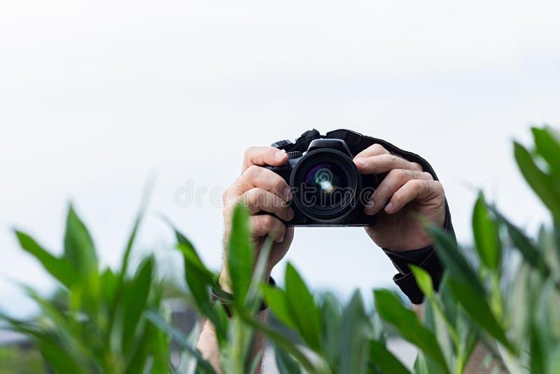 Hombre que toma imágenes de detrás los arbustos imagen de archivo