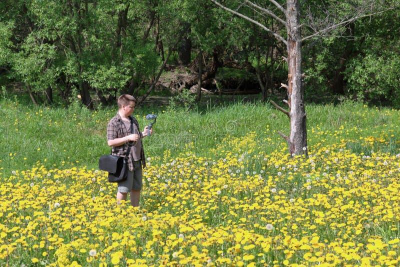 Hombre regordete joven en un prado con los dientes de león florecientes Conduce la grabación de vídeo en un smartphone instalada  imagenes de archivo