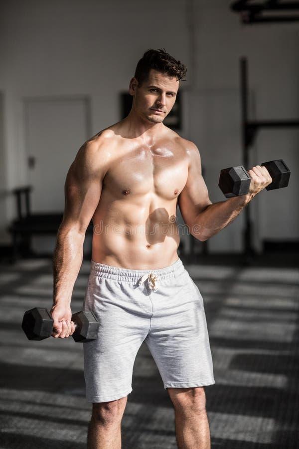 Hombre serio muscular que hace levantamiento de pesas imágenes de archivo libres de regalías