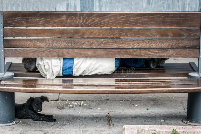 Hombre sin hogar pobre con su perro que duerme en la calle urbana en la ciudad en el banco de madera imagenes de archivo
