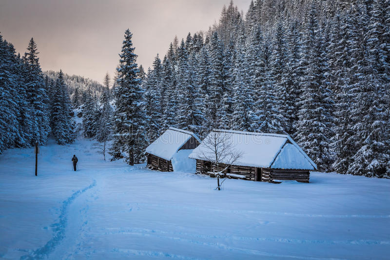 Hombre solitario en rastro de montaña del invierno imágenes de archivo libres de regalías