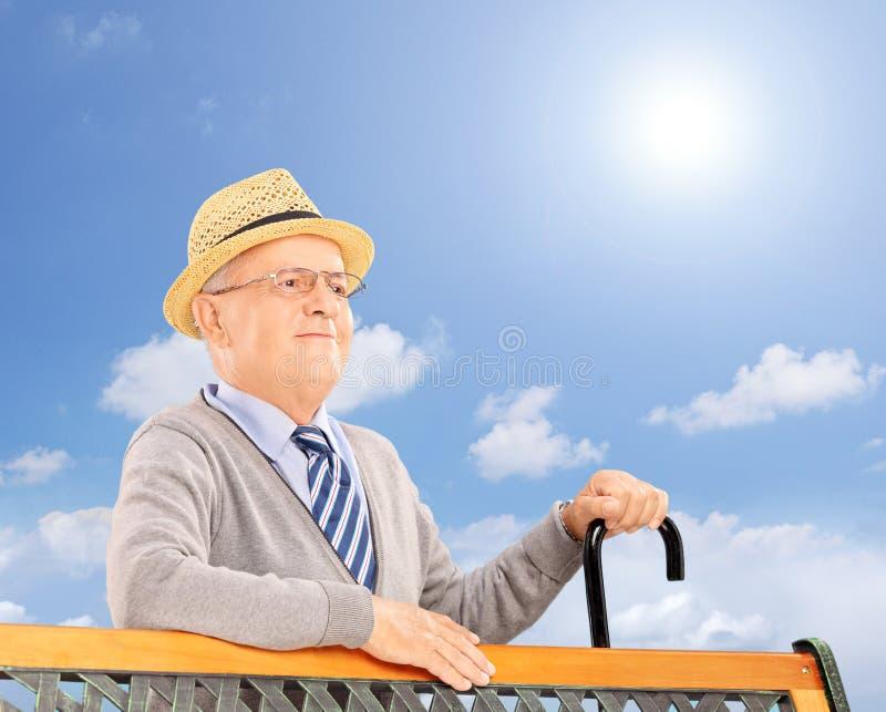 Hombre sonriente mayor en un banco de madera que presenta afuera en una d soleada imagen de archivo libre de regalías