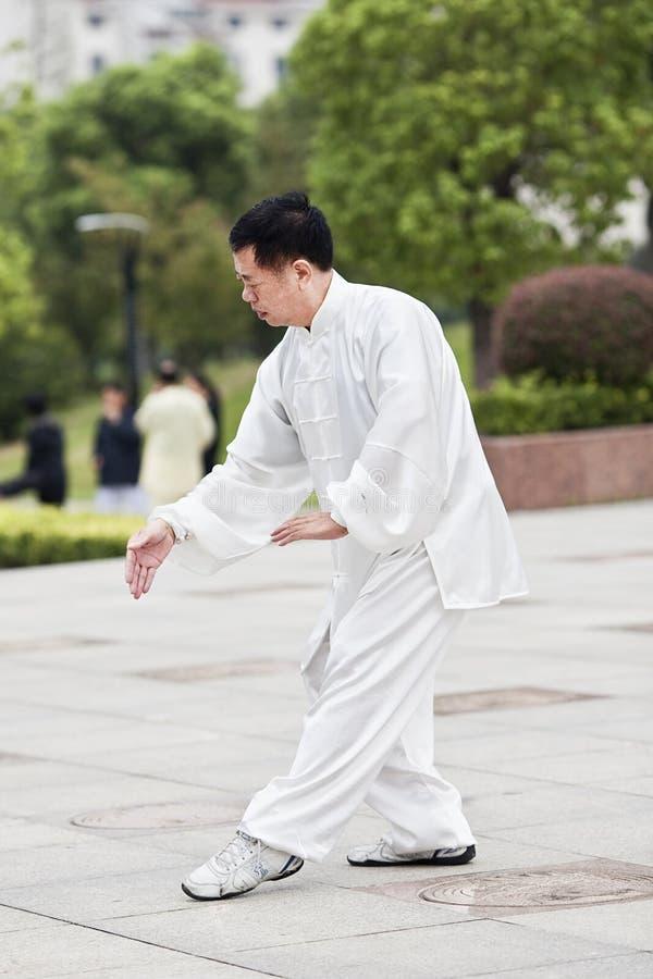 Hombre vestido tradicional que practica a Tai Chi en un parque, Yangzhou, China imagenes de archivo