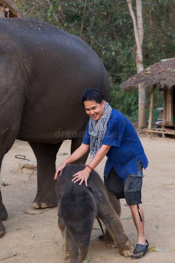 Hombre y elefante fotos de archivo libres de regalías