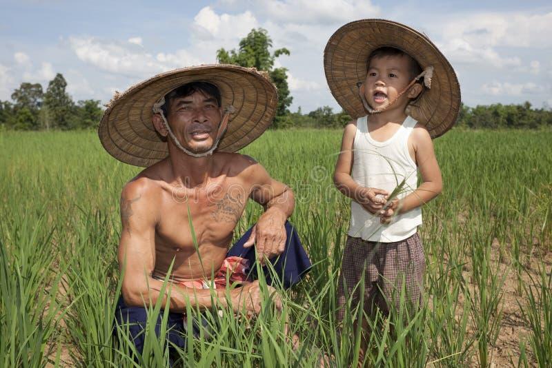 Hombre y niño en el arroz de arroz, Tailandia foto de archivo libre de regalías